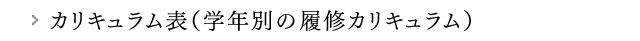 カリキュラム表(学年別の履修カリキュラム))